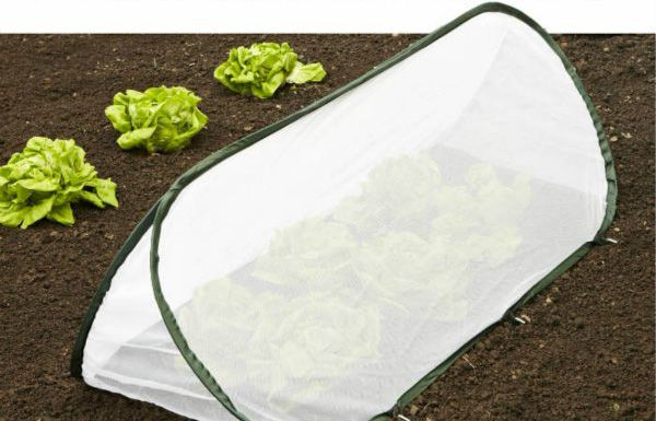 Insect Net Pop Up Protectors