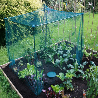 Vegetable cages 100 for Garden cage